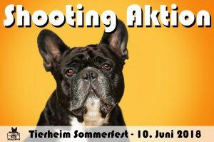 BB SnapShot Shooting Aktion auf dem Tierheim Kaiserslautern Sommerfest 2018